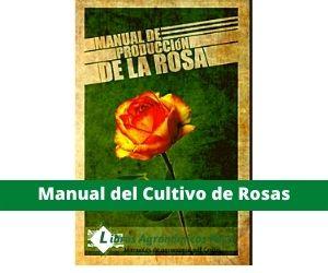 Manual del Cultivo de rosas pdf