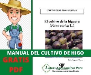 Manual del Cultivo de Higo