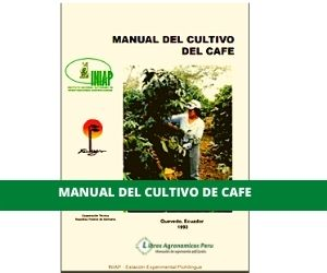 Manual del Cultivo de CAFE PDF
