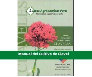 Manual del cultivo de clavel pdf