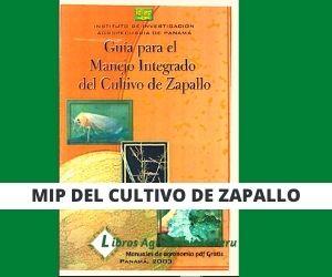 Guía para el manejo Integrado del Zapallo. pdf