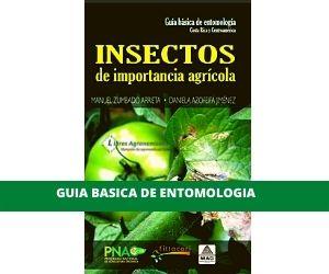 Guia Basica de Entomologia. pdf
