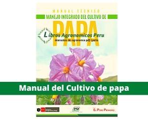 Manual del cultivo de papa. PDF