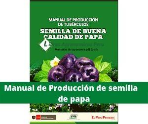 Manual de Producción de semilla de papa PDF