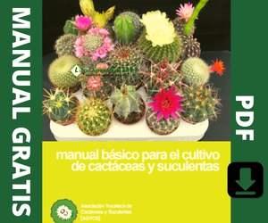 Guía para cultivar Cactáceas y Suculentas